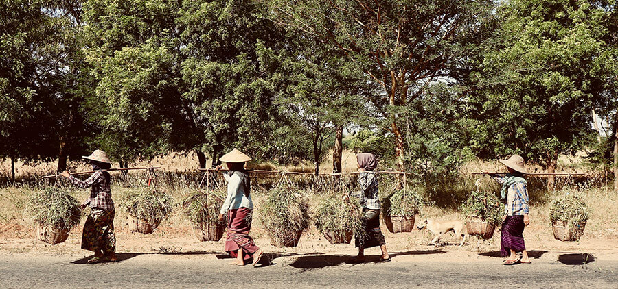 Local farming women transporting goods